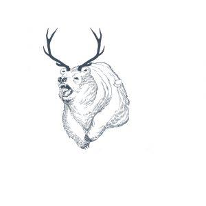 Hirschbär